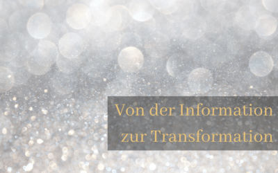 Von der Information zur Transformation